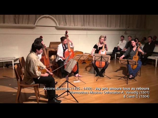 Gambenmusik 15 16 Jh Senfl Isaac Pinarol de Bruequet etc