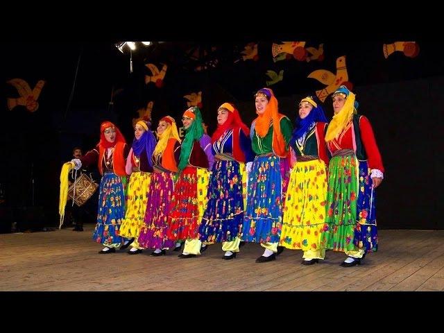Kürtçe Hareketli Yaz Şarkıları 2017 Kurdish Music
