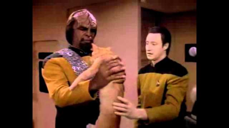 Data asks Worf to take care of Spot hahahahhahahahhahahhahhahahahahahHHHhHhHhH