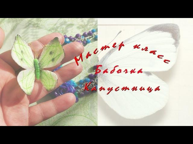Бабочка Капустница * мастер класс * полимерная глина