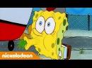 Губка Боб Квадратные Штаны 1 сезон 4 серия Nickelodeon Россия