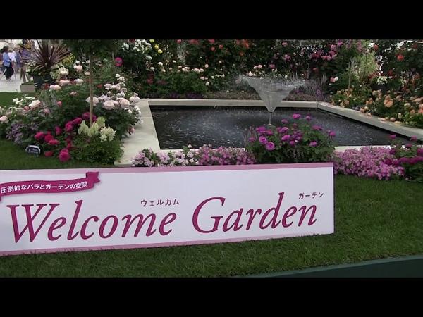 第19回国際バラとガーデニングショー世界一美しい庭ブッチャ 653