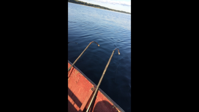Рыбалка или ебалка хз