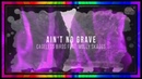 Ain't No Grave ~ Cageless Birds feat Molly Skaggs Lyric Video