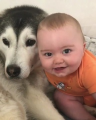 "🌟Rima Pendgieva (ПЫШКИ РУЛЯТ ) on Instagram: ""😍😍😍 Боже...эти двое сделали мое утро... Я просто в восторге.... Чудо-ребенок и чудо-собака... Море по"