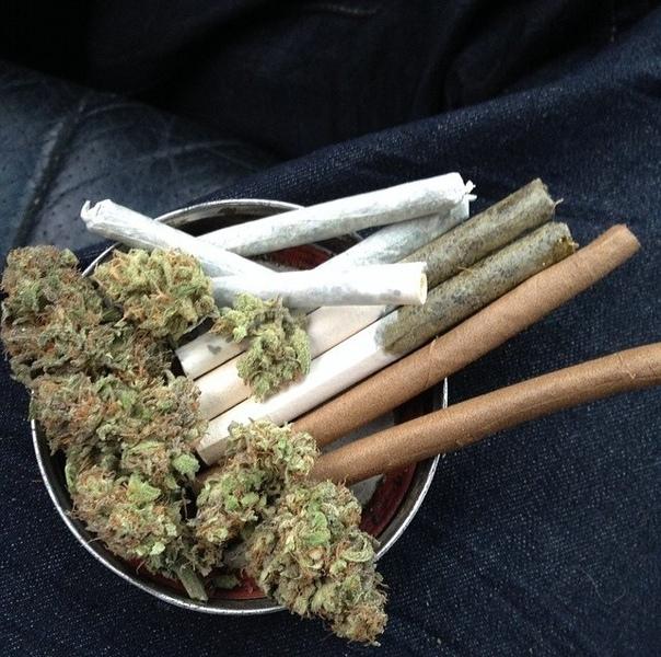 Как курить коноплю в сигарете марихуана парник