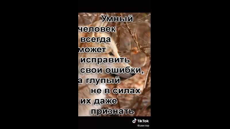 154a74f68c85bf8b231e11a54273d700.mp4