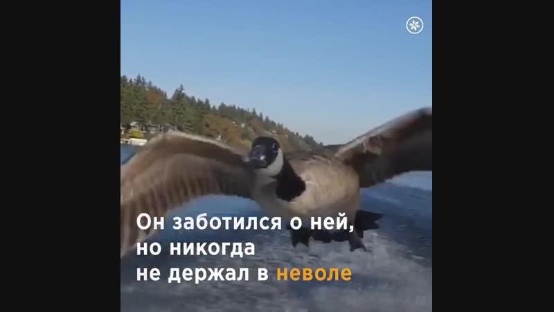 VIDEO-2019-12-07-16-17-53.mp4