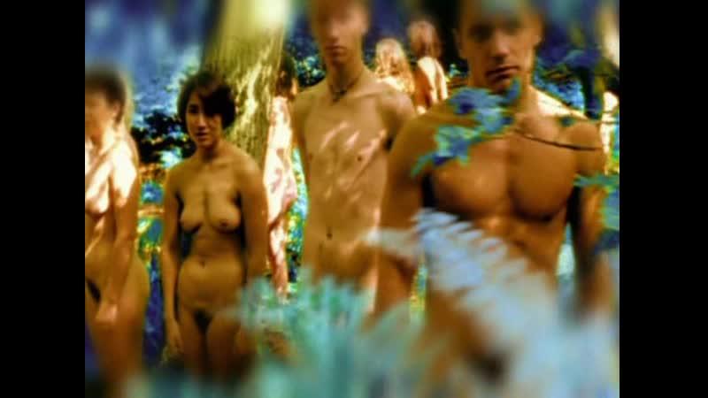 BBC Тело человека Обыкновенное чудо 2