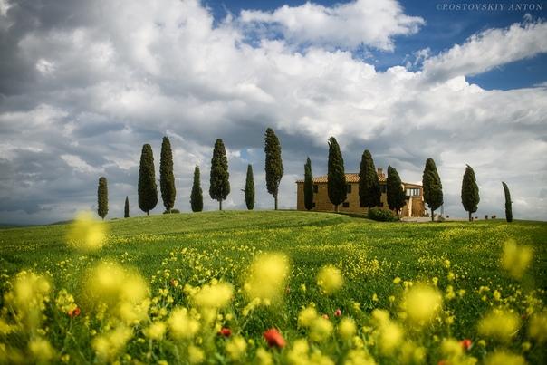 Цветущая Тоскана