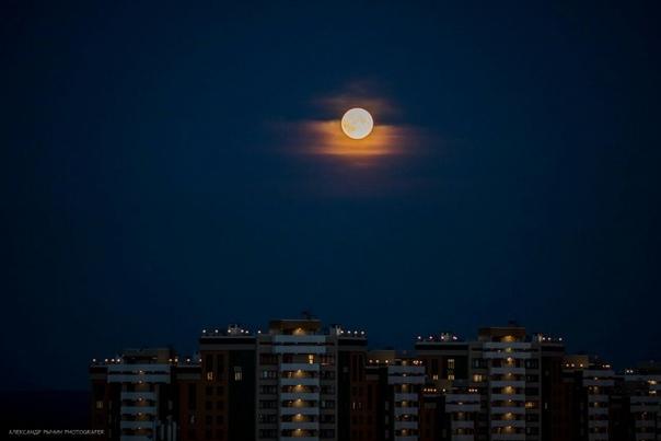 А вы вчера наблюдали за луной?)  Александр Рычин