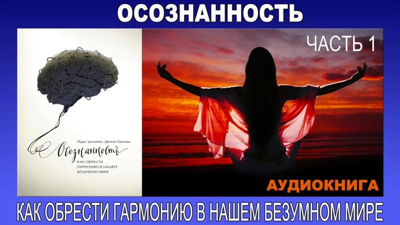 Аудиокнига Осознанность как обрести гармонию в нашем безумном мире Часть 1 3
