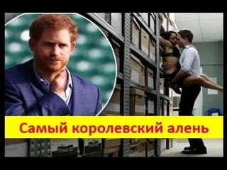 Принц Гарри - самый королевский алень.  Мужское движение.