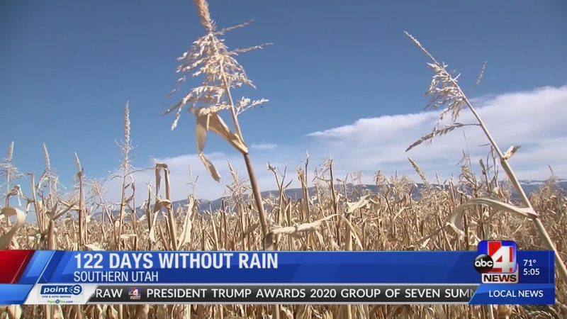 Worried farmers 'humbled' as St. George sets record dry spell