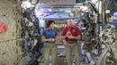 NASA admits: We never went beyond Low-Earth orbit