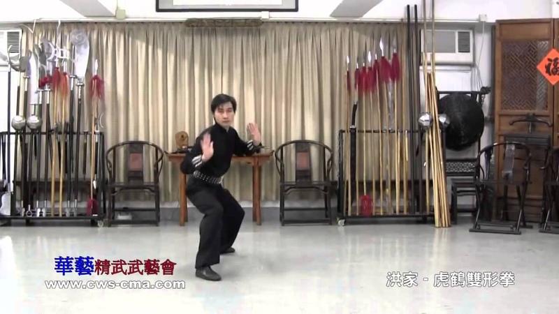洪家 虎鶴雙形拳及應用 Hong Jia Tiger Crane Hu He Shuanxing Quan Application
