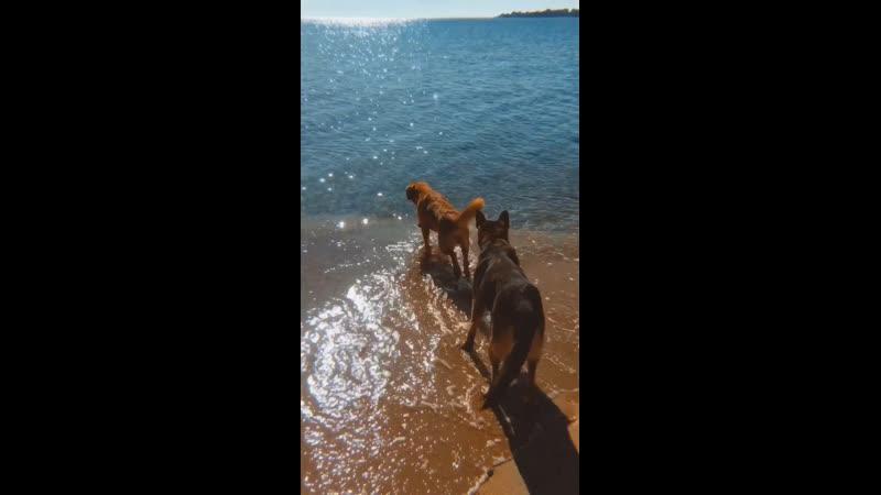 Пляж Супер Аква ❤️ 24.10.19
