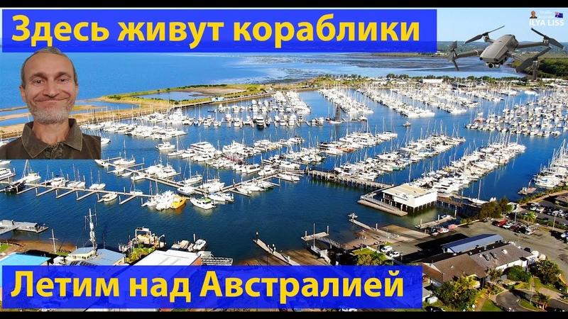 Здесь живут белые австралийские кораблики. (видео 251)