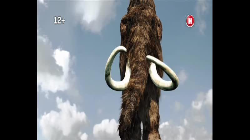Мамонты - гиганты ледникового периода