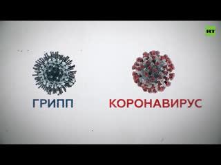 Смертность, скорость распространения и отсутствие вакцины: чем коронавирус опаснее гриппа