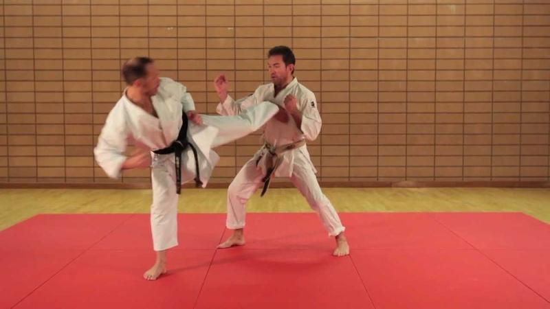 KARATÉ EXPERT - PASSAGE DE GRADES - Kihon Ippon Kumite - Niveau Avancé - 1er DAN - Eric Delannoy