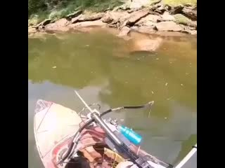 Как вы думаете - это рыбак