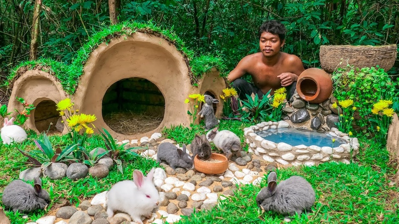 Rescue Rabbit From Meat Serve Place and Build the Bunny Hobbit House