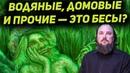 Лешие водяные кикиморы и домовые это всё бесы Священник Максим Каскун