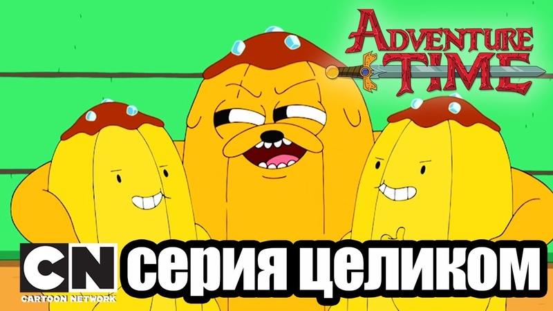 Время приключений Тонкая желтая линия Сломал свою корону серия целиком Cartoon Network