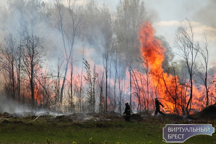 Посмотрите ещё фото с сегодняшнего пожара за КСМ