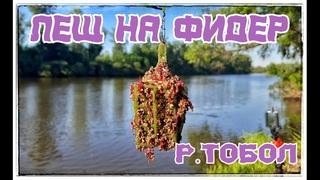 Лещ на Фидер на реке Тобол. Тестирую еще один, новый состав корма. Результат сумасшедший, рыба есть!