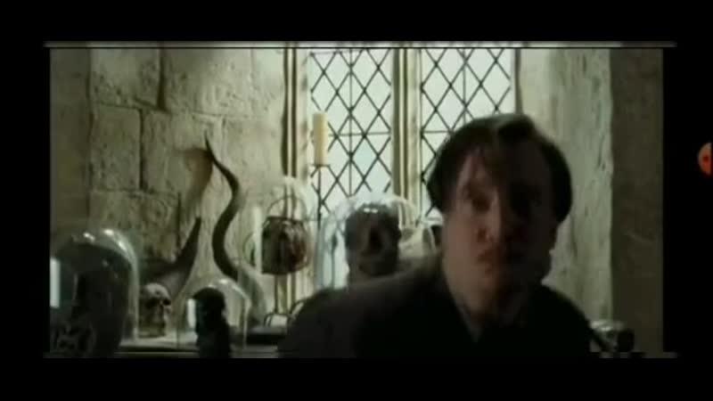 Remus Lupine vine