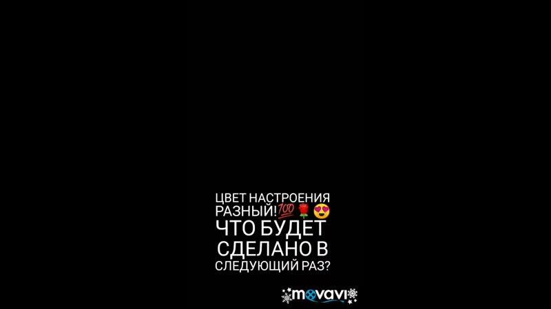 VID_355210122_115439_240.mp4