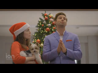 12 Pups of Christmas  (ION TV 2019 US) (ENG)