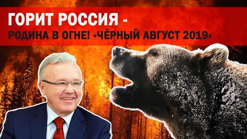 «Чёрный Август». Горит Россия - Родина в огне! Никто не тушит. Денег нет