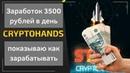 Заработок 3000 рублей в день показываю как зарабатывать обзор CryptoHands