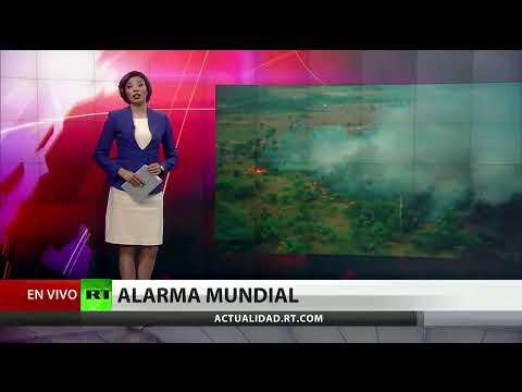 Presión internacional para que Bolsonaro reaccione ante los incendios - NOTICIERO 23/08/2019