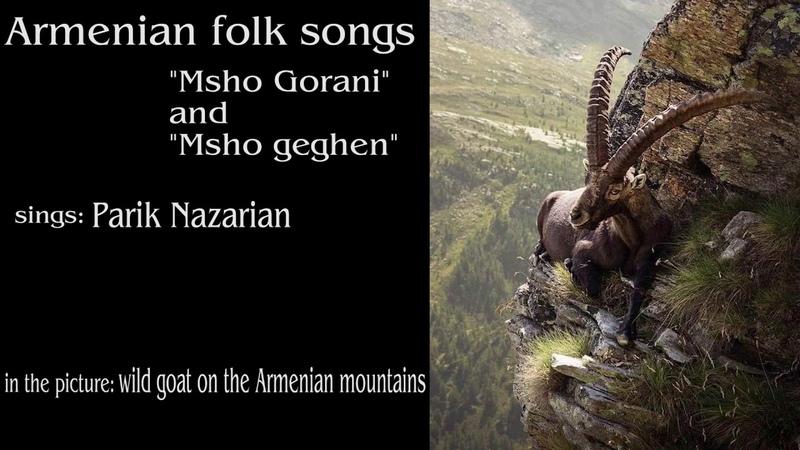 Parik Nazarian - Msho Gorani and Msho Geghen (Armenian folk songs)
