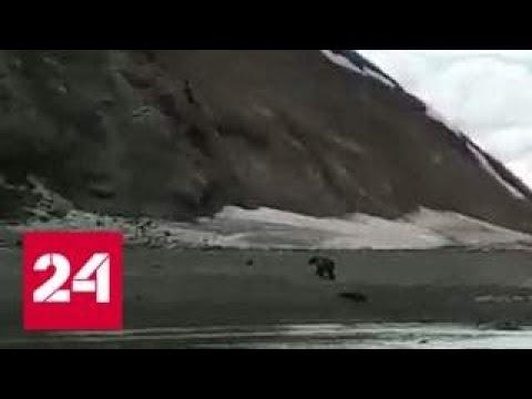 Беги Серега очевидец снял на видео фатальную встречу рыбака с медведем Россия 24