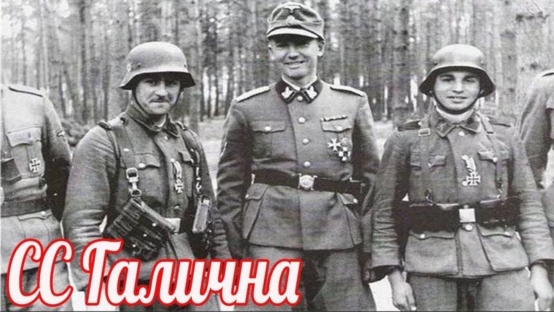 Как уничтожали дивизию СС Галичина Они умели петь песни но не умели воевать