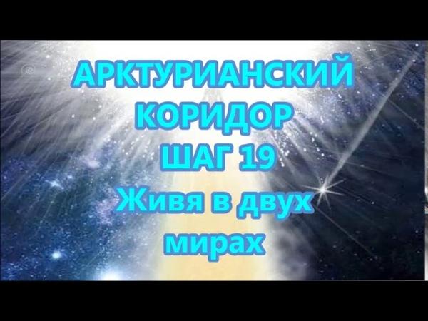 АРКТУРИАНСКИЙ КОРИДОР - ШАГ 19 - Живя в двух мирах