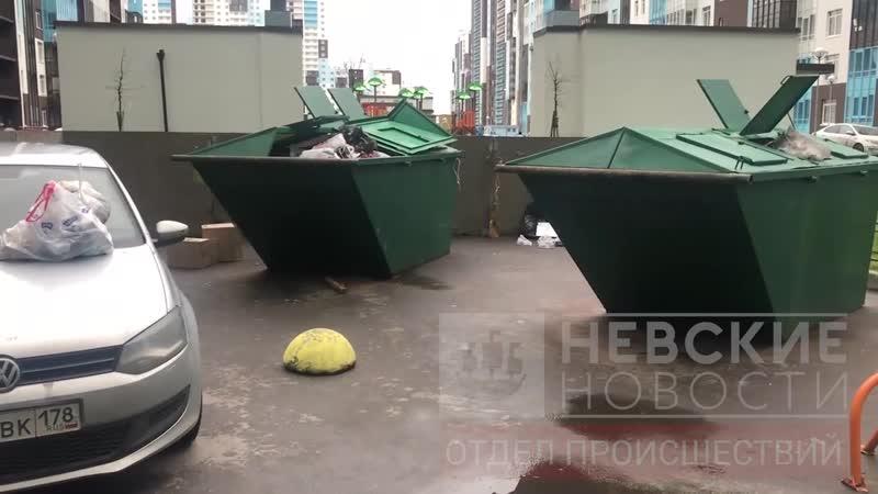 На Арцеуловской жильцы превращают в мусорные баки наглых парковщиков