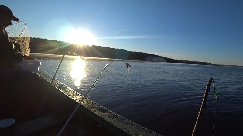 Рыбалка красивым ранним утром Ловля Леща на донку с лодки Река Волга