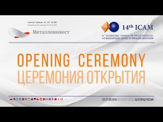 14-й Международный конгресс по прикладной минералогии (ICAM-2019)