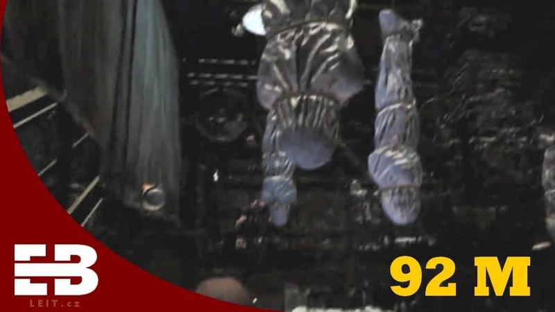Resident Evil News 5 - Annette Birkin, New VR attraction...