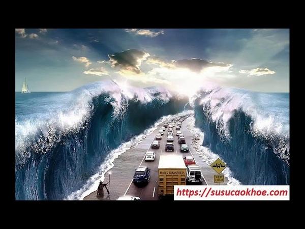 Giải mã giấc mơ thấy sóng thần là điềm gì, đánh con gì, tốt hay xấu - susucaokhoe