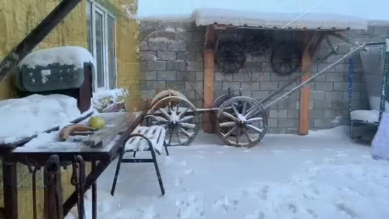 Олесь Петрович Жизнь в 53 банан и гвозди поломанная простынь LIFE AT 53