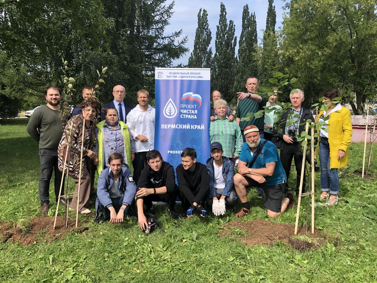 Общественники Мотовилихи высадили аллею «Дружбы»
