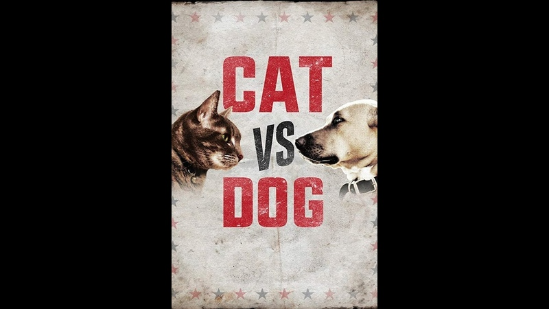 Кошка против собаки Cat Vs Dog 2017 3 серия Animal Planet