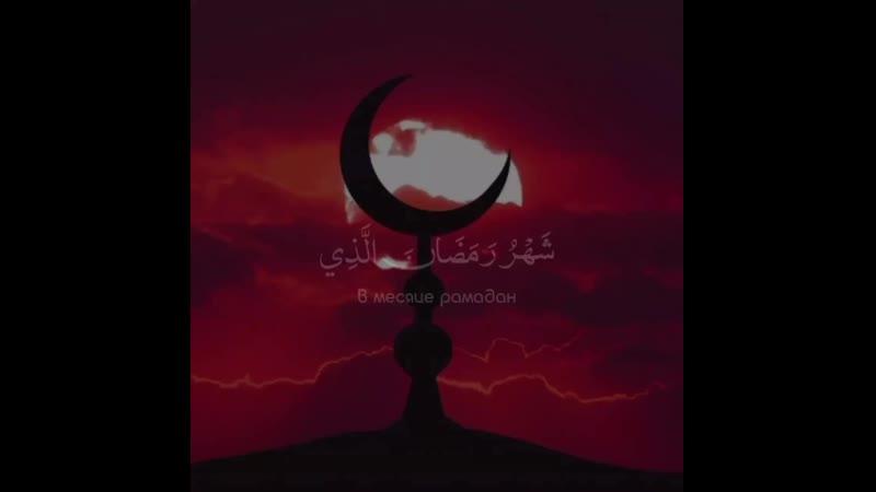 Чтец Umayr ShamimSurat 2 Al Baqara